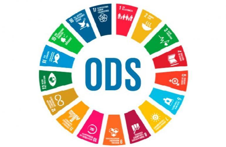 Scouts por los ODS